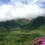 ミヤマキリシマ満開のくじゅう。大船山から平治岳へ