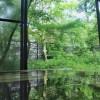 ひのき風呂で迎える最高の朝 熊本県阿蘇の素泊まり宿 麻生釣温泉亀山の湯