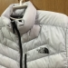 THE NORTH FACE( ザ・ノース・フェイス)のThunder Jacket(サンダージャケット)は羽のような軽さと高い収納性を持つダウンジャケット